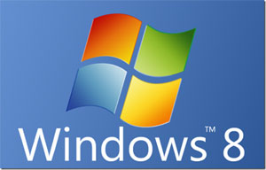 Microsoft Windows 8 Home Premium 64bit OEM (1 user)